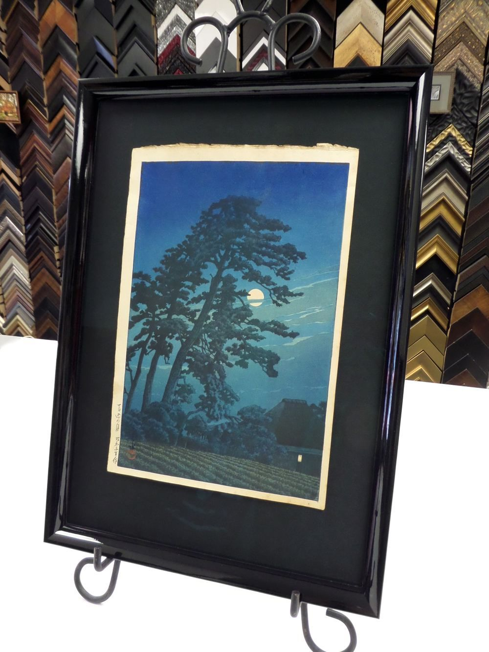 photo of a tree framed in black